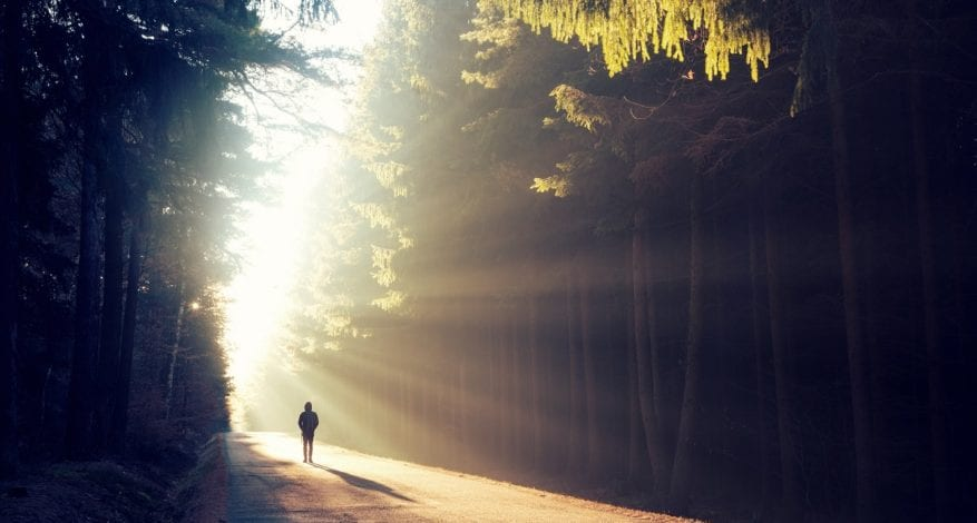 Man walking down road in the forest
