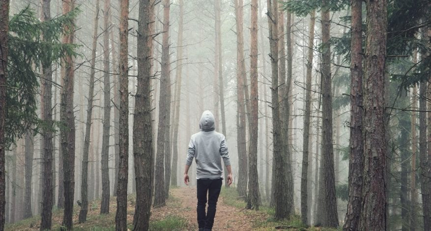 A Man is Walking in Forest